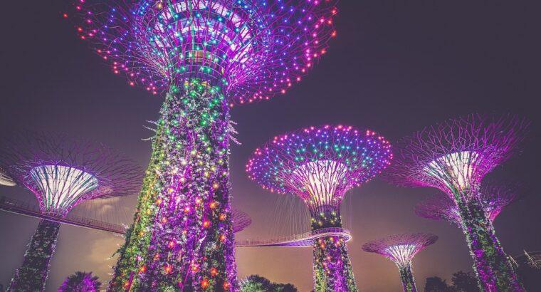 Singapore E Visit Visa (Single Entry) 30 Days