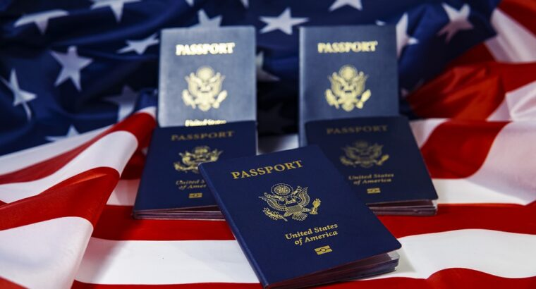 We are visa assistance