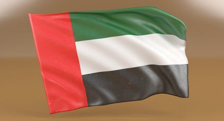 Dubai Visit Visa (Single Entry) 14 Days