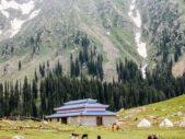 3 Days Snowy Swat Kalam Malam Jabba Tour