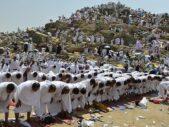 Hajj & Umrah Best Service Available