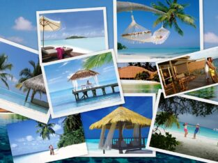 Plans Your Holidays Tour with us